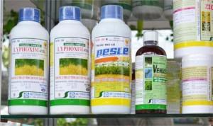 Giấy chứng nhận đủ điều kiện sản xuất thuốc bảo vệ thực vật